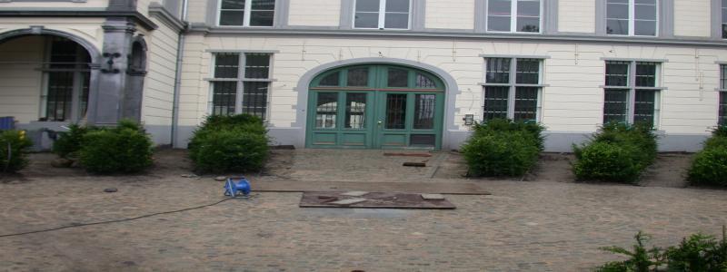 jardin été 2010 108.jpg