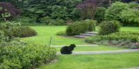 divers jardins2009 015.jpg